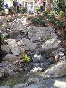 Rock Pond, Water Feature, Landscaping, Charlotte, NC