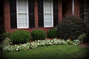 Flowerbed, Landscaping