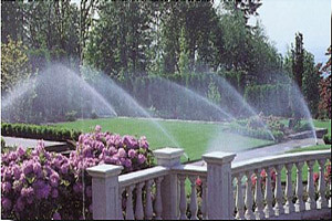 Irrigation, Earthscape Company, Charlotte
